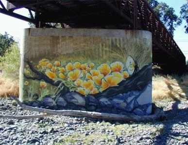 Ceres Bridge Underpass Murals 1