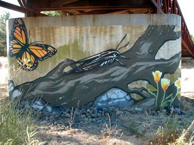 Ceres Bridge Underpass Murals 2