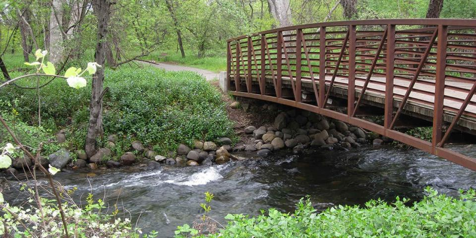 bridge over creek in Bidwell Park